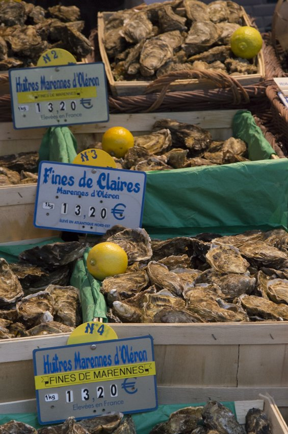 Fresh oysters at Rue Mouffetard