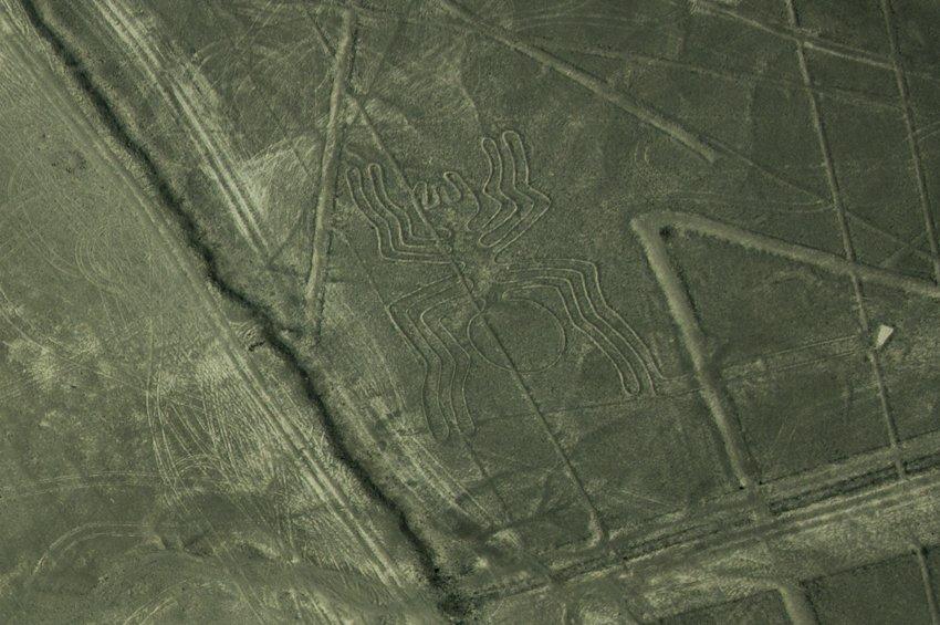 Spider, Nazca Lines