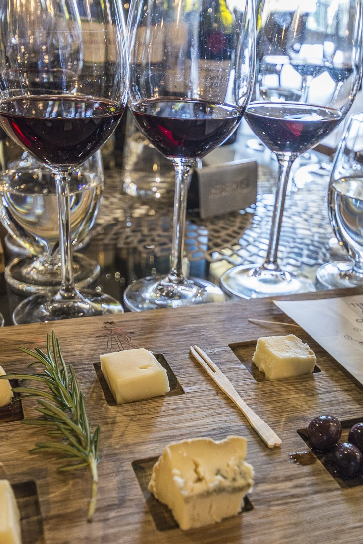 Wine and cheese pairing at Terra del Capo Winery, Franschhoek
